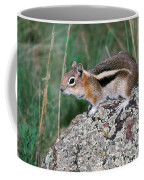 Golden Mantled Ground Squirrel Coffee Mug