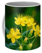 Golden Miracles Coffee Mug