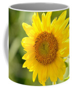 Golden Moment - Sunflower Coffee Mug