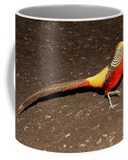 Golden Pheasant Male Coffee Mug