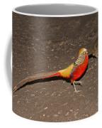 Golden Pheasant Pair Coffee Mug
