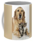 Golden Retriever And Kittens Coffee Mug