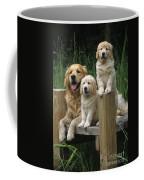 Golden Retriever Dog With Puppies Coffee Mug