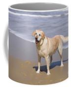 Golden Retriever On Beach Coffee Mug