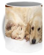 Golden Retriever Puppies Suckling Coffee Mug