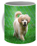 Golden Retriever Puppy Coffee Mug
