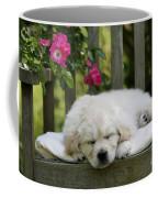 Golden Retriever Puppy Sleeping Coffee Mug