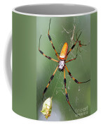 Golden Silk Spider Capturing A Stinkbug Coffee Mug