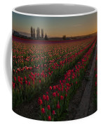 Golden Skagit Tulip Fields Coffee Mug