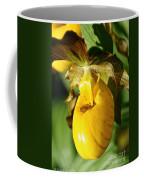Golden Slipper Coffee Mug