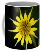 Golden Star Flower Yellow Salsify Glacier National Park Coffee Mug