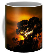 Golden Sunset... Coffee Mug