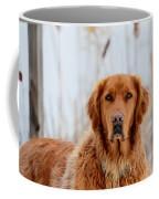 Golden Thoughts Coffee Mug