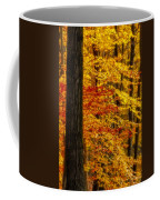 Golden Trees Glowing Coffee Mug