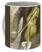 Golden Violin Coffee Mug