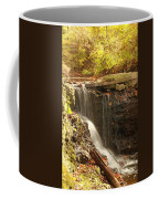 Golden Waterfall October In Ohio Coffee Mug