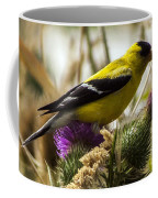 Goldfinch Atop A Purple Thistle Coffee Mug
