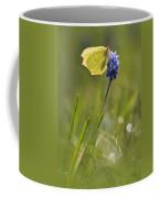 Gonepteryx Rhamni On The Blue Flower Coffee Mug
