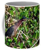 Good Old Dollar Weed  Coffee Mug