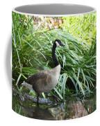 Goose Walking Back In For A Swim Coffee Mug