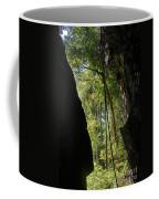 gorge in the Tsingy de Bemaraha Madagascar Coffee Mug