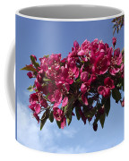 Gorgeous Hot Pink Coffee Mug