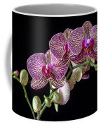 Gorgeous Orchids Coffee Mug