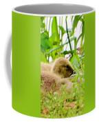 Gosling Sleep Coffee Mug