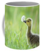 Gosling With Dandelion Coffee Mug