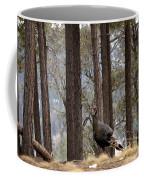 Gould's Wild Turkey IIi Coffee Mug