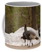 Gould's Wild Turkey Iv Coffee Mug
