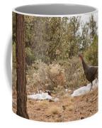 Gould's Wild Turkey Vii Coffee Mug
