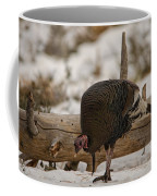 Gould's Wild Turkey Xi Coffee Mug
