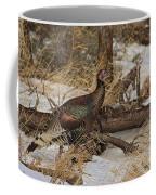 Gould's Wild Turkey Xiii Coffee Mug