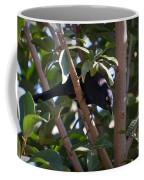 Grackle Stare Coffee Mug