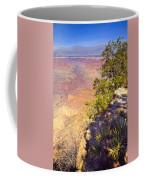 Grand Canyon 55 Coffee Mug