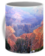Grand Canyon 67 Coffee Mug