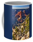 Grand Canyon Branches Coffee Mug