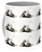 Grand Kitty Cuteness Bw 9 Coffee Mug