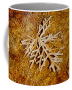 Grand Prismatic Springs 2.0058  Coffee Mug