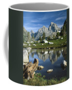 1m9374-grand Teton Reflect Coffee Mug