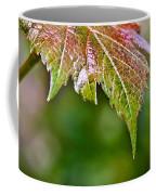 Grape Autumn Leaf Coffee Mug