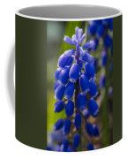 Grape Hyacinth Coffee Mug by Adam Romanowicz