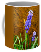 Grape Hyacinth And Sandstone  Coffee Mug
