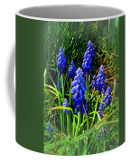 Grape Hyacinths 2014 Coffee Mug