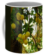 Grapefruits Coffee Mug