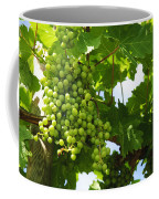 Grapes In A Vineyard Coffee Mug