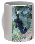 Grapes Coffee Mug
