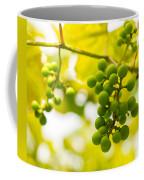 Grapes On The Vine - Finger Lakes Vineyard Coffee Mug