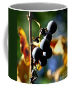 Grapes On The Vine In Square  Coffee Mug by Neal Eslinger